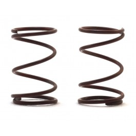 RJ Speed RJS5228  Legends Front Springs (2)
